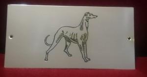 placa-homenaje-perro-galgo